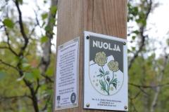 Markierung des Fries-Pfades am Nuolja.