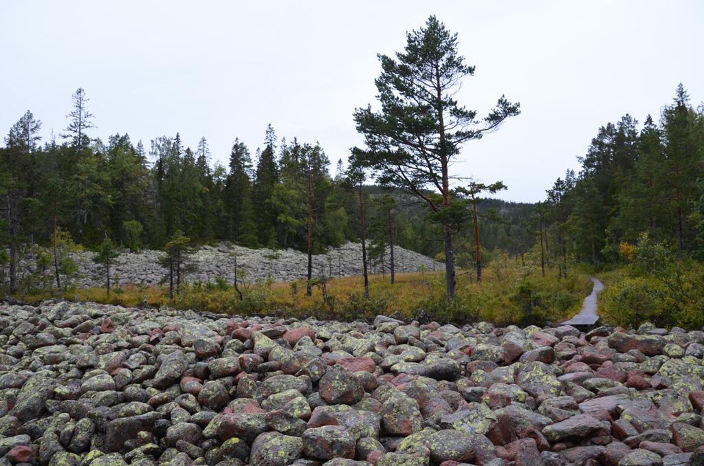 An den einst von der Brandung rundgeschliffenen Steinen hält nichts - auch wenn sie längst weiter oben am Berg liegen.