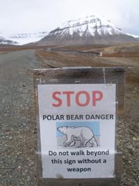 Eisbär-Schild