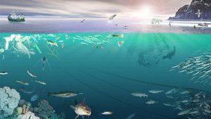 Ökosystem der Barentssee