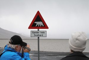 Eisbärenschild
