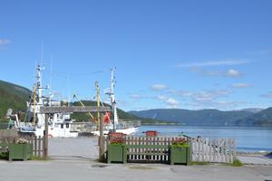 Skjerstadfjord Rognan