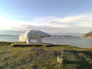 Eisbär Hammerfest