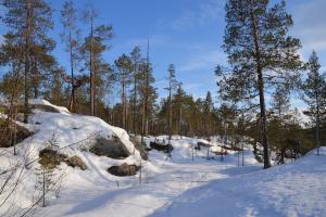 Winterliches Nordschweden