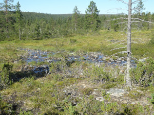 Urho Kekkonen Nationalpark