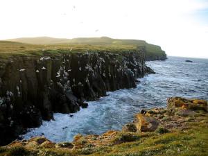Grímsey Küste