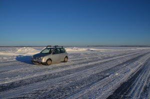 Lupo auf dem Eis