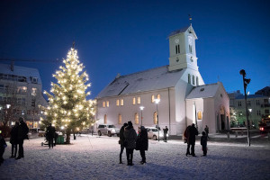 Weihnachtsbaum in Reykjavik