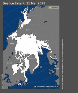 Meereis Maximum 2021