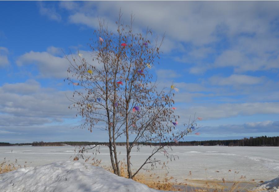 Osterbaum Piteå