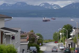 Narvik Reede